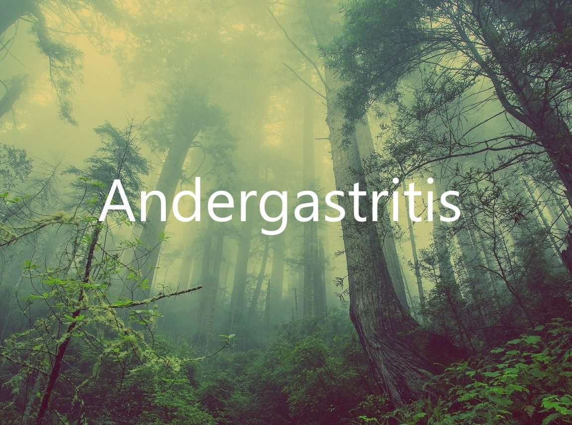 Andergastritis
